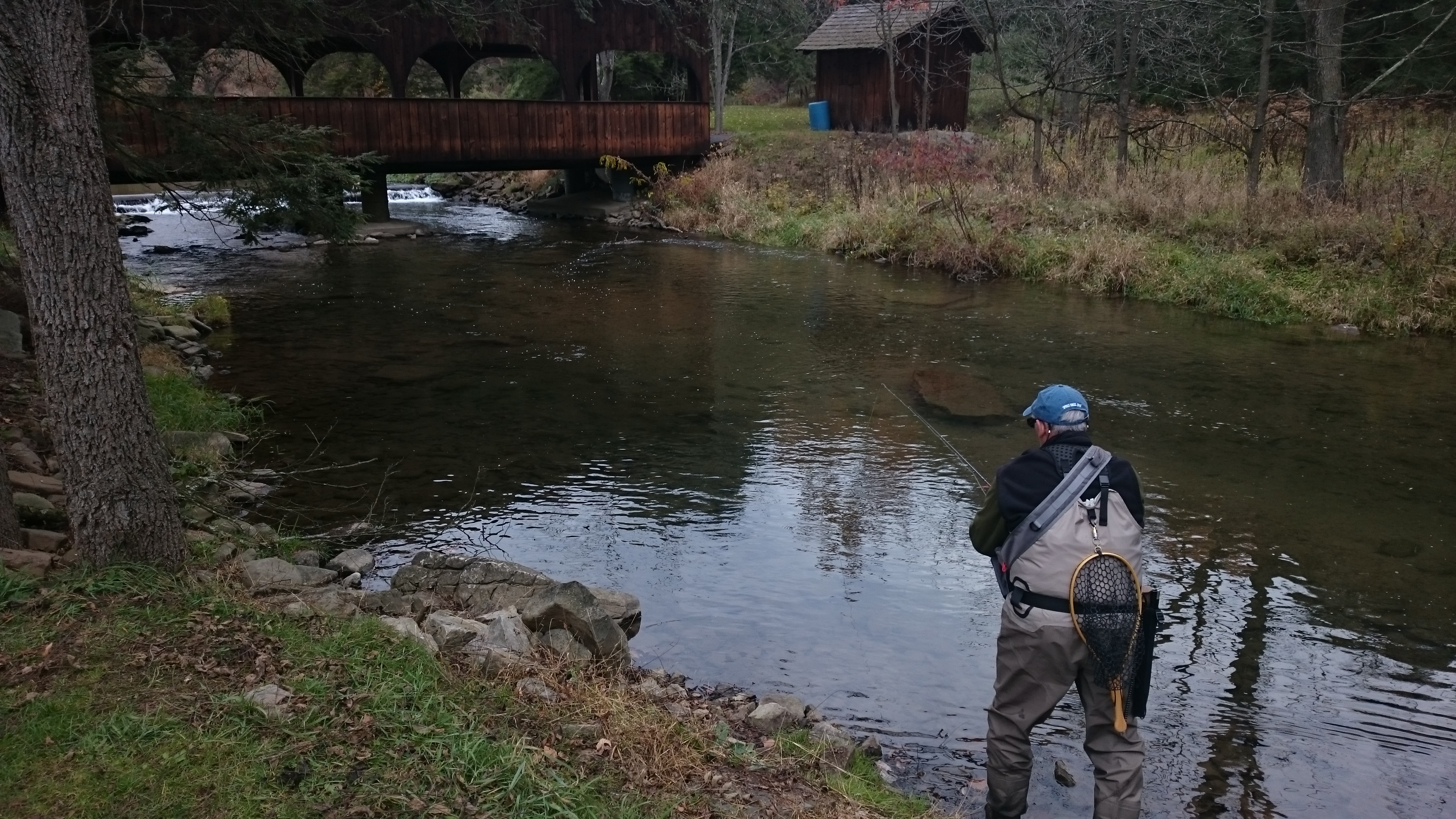 Pennsylvania fly fishing reports trout haven for Trout fishing pa
