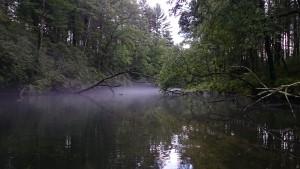 Swift River Above Rt 9