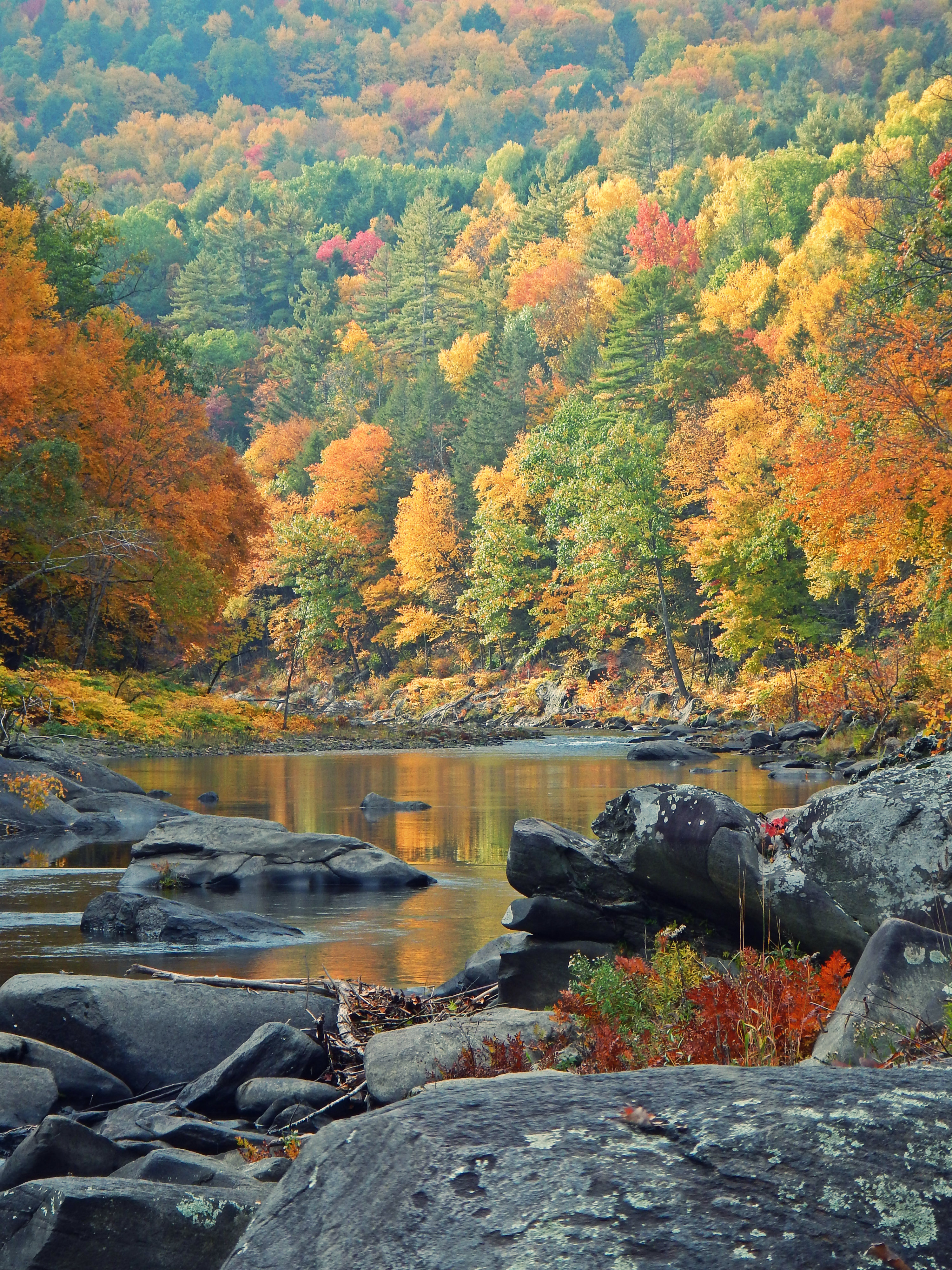 Massachusetts fly fishing trout haven for Mass fish stocking