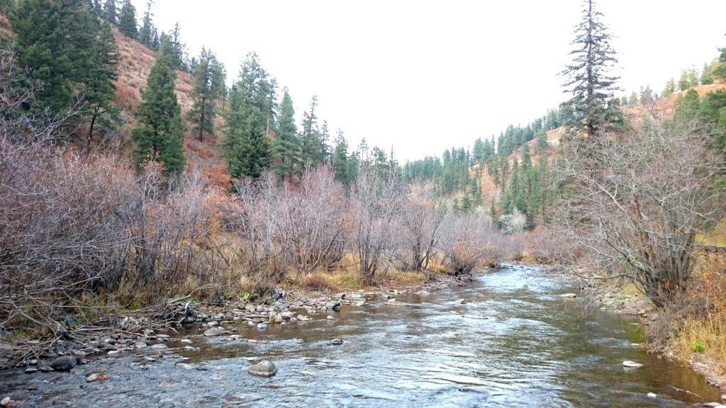 The Pecos River New Mexico Fly Fishing Pecos River Dry Fly Fishing