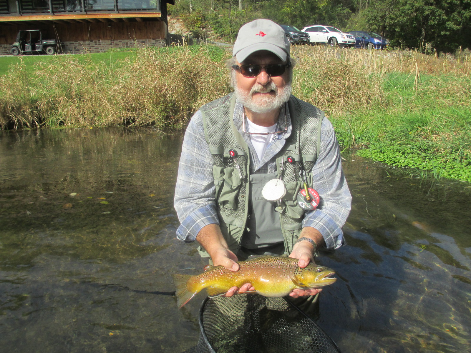 Pa fly fishing october on spruce creek trout haven for Trout fishing pa