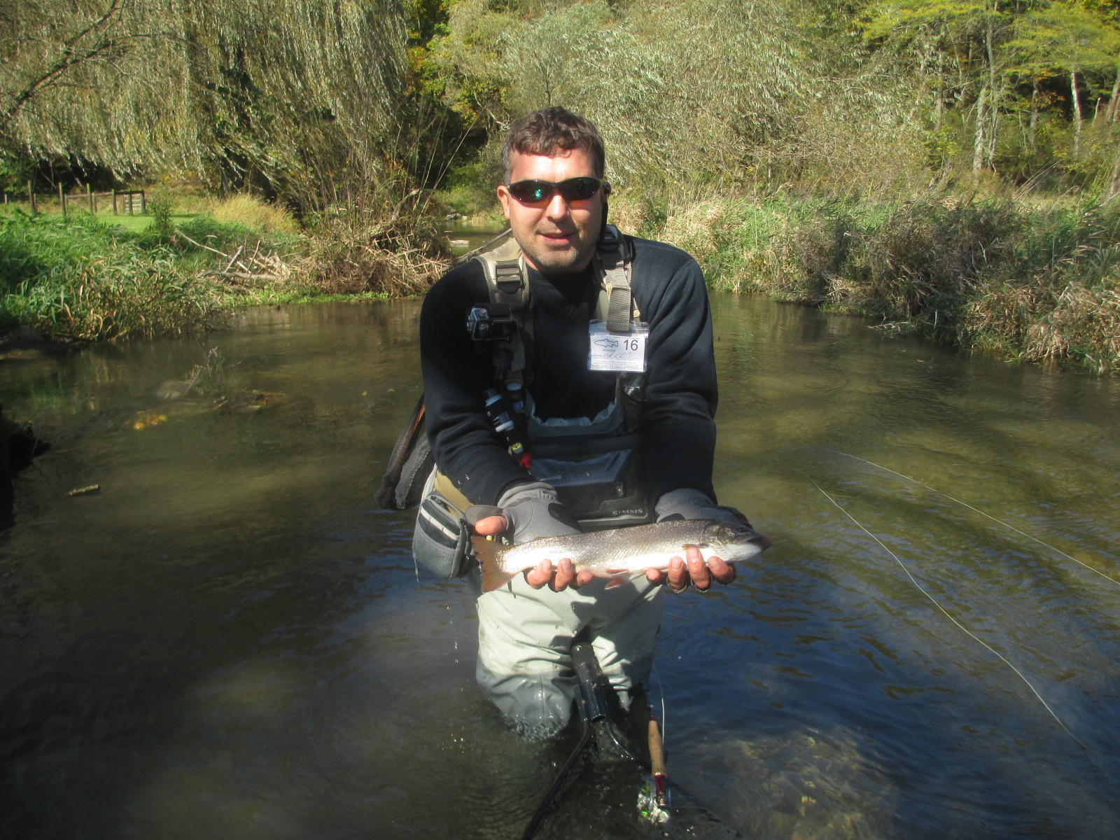 Pa fly fishing october on spruce creek trout haven for Pa fly fishing