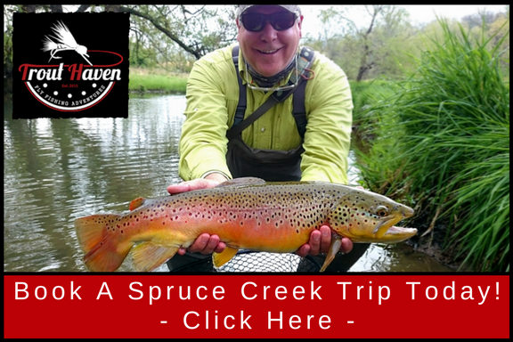 Spruce Creek PA Guided Fly Fishing Trip