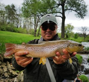 Biggest Wild Trout Pennsylvania Trout Haven Spruce Creek PA Guided Fly Fishing Trip Spruce Creek PA Fly Fishing Season 2019