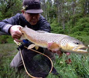 Early May Fly Fishing Pennsylvania Brown Trout 2017