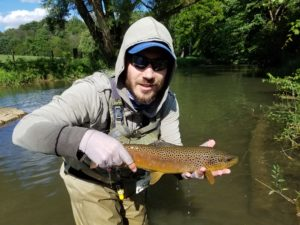 Early Summer PA Fly Fishing brown trout spruce creek Pennsylvania trout haven