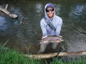 terrestrial dry flies on spruce creek trout haven rainbow trout