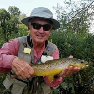Summer Fly Fishing in Central PA brown trout japanese beetle terrestrial