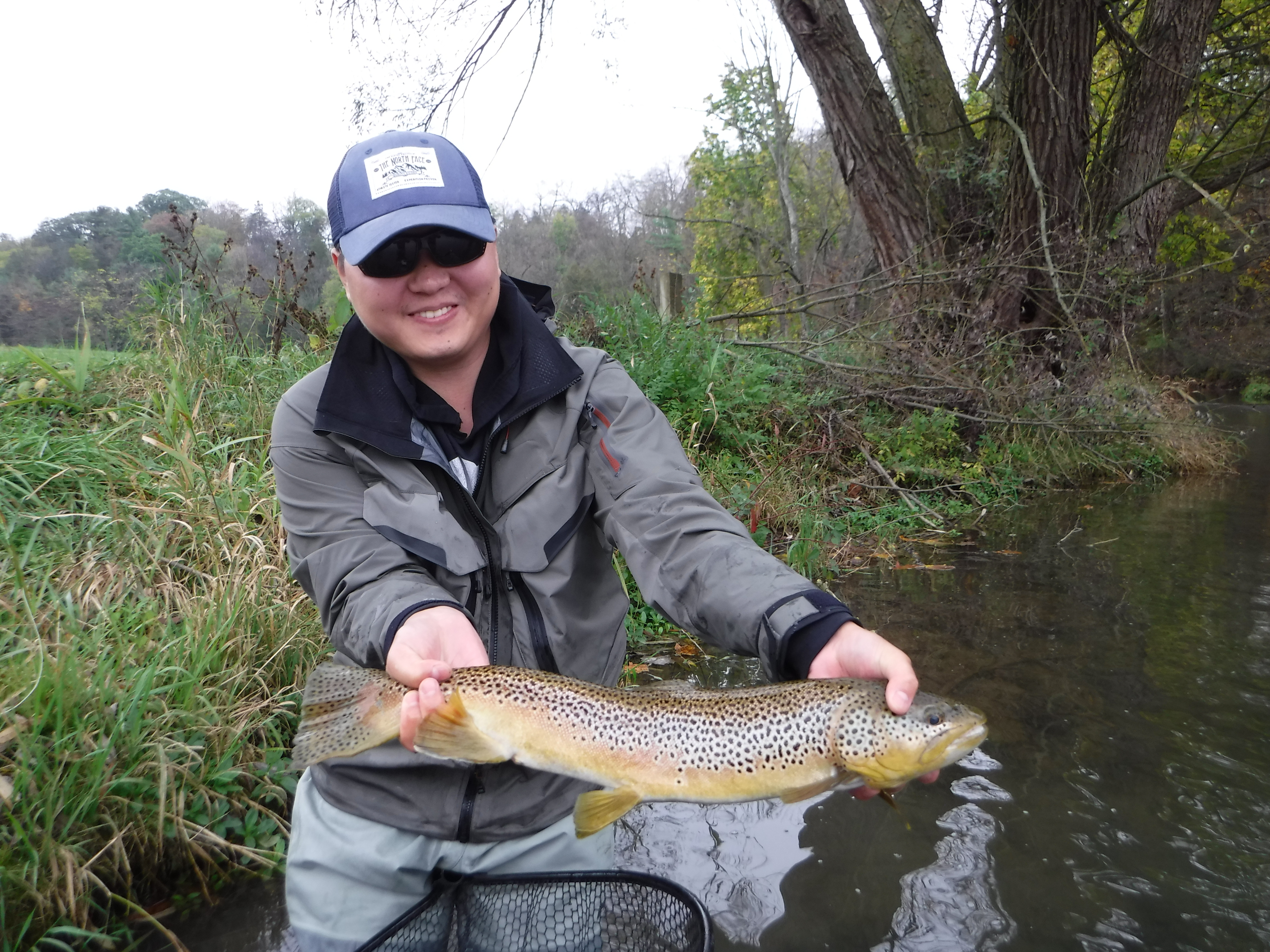 5 huge trout highlights best pennsylvania fly fishing