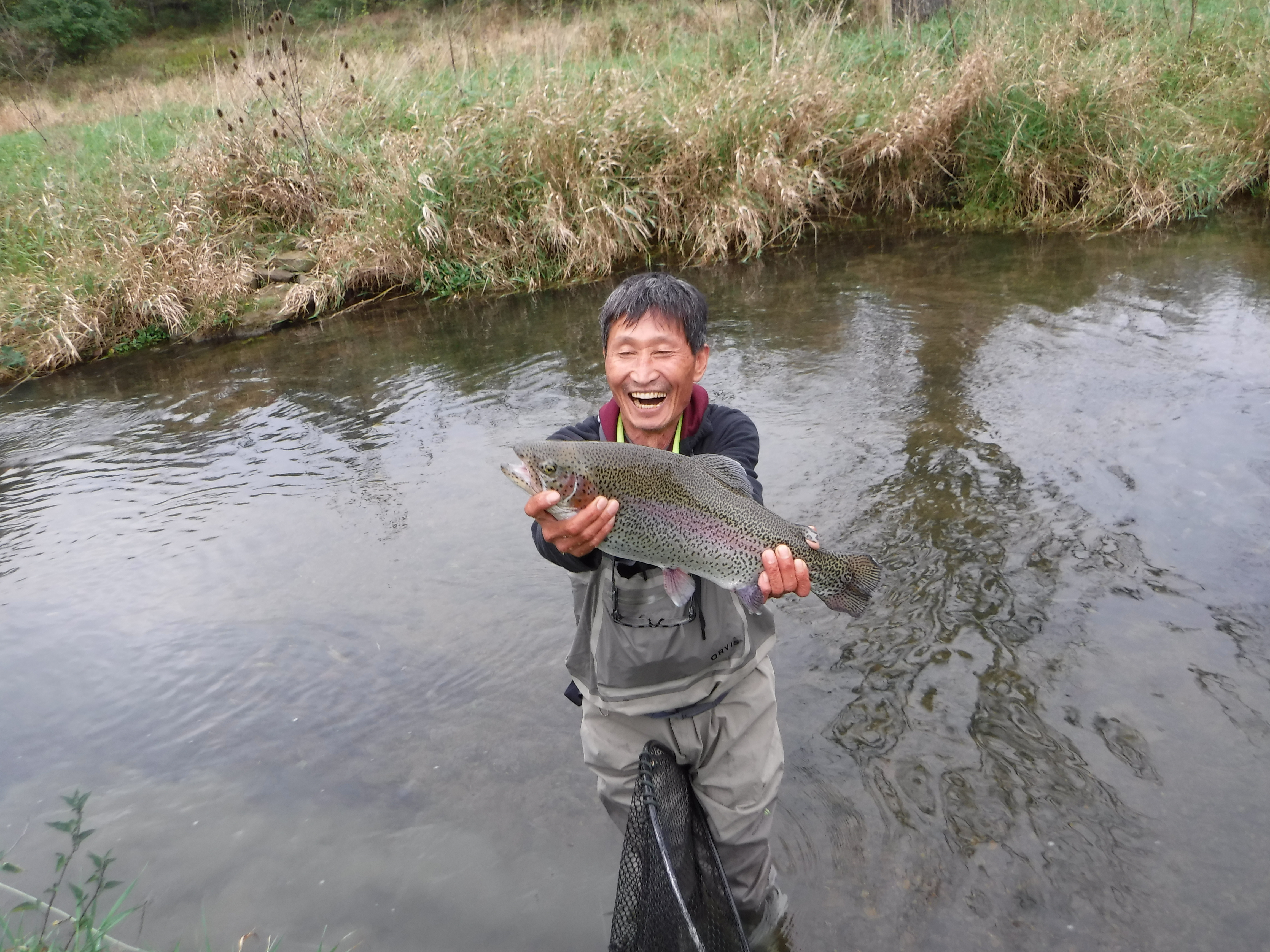 Late season caddis pa fly fishing on spruce creek trout for Fly fishing pa
