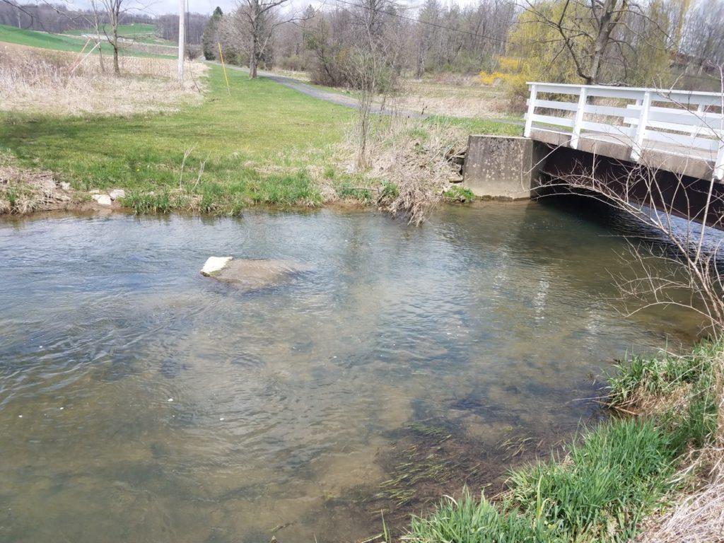 "Below ""Bridge Pool"""