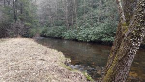 Hunting for Hidden Treasure PA Spring Fly Fishing trout haven
