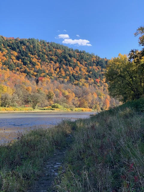river photo 2